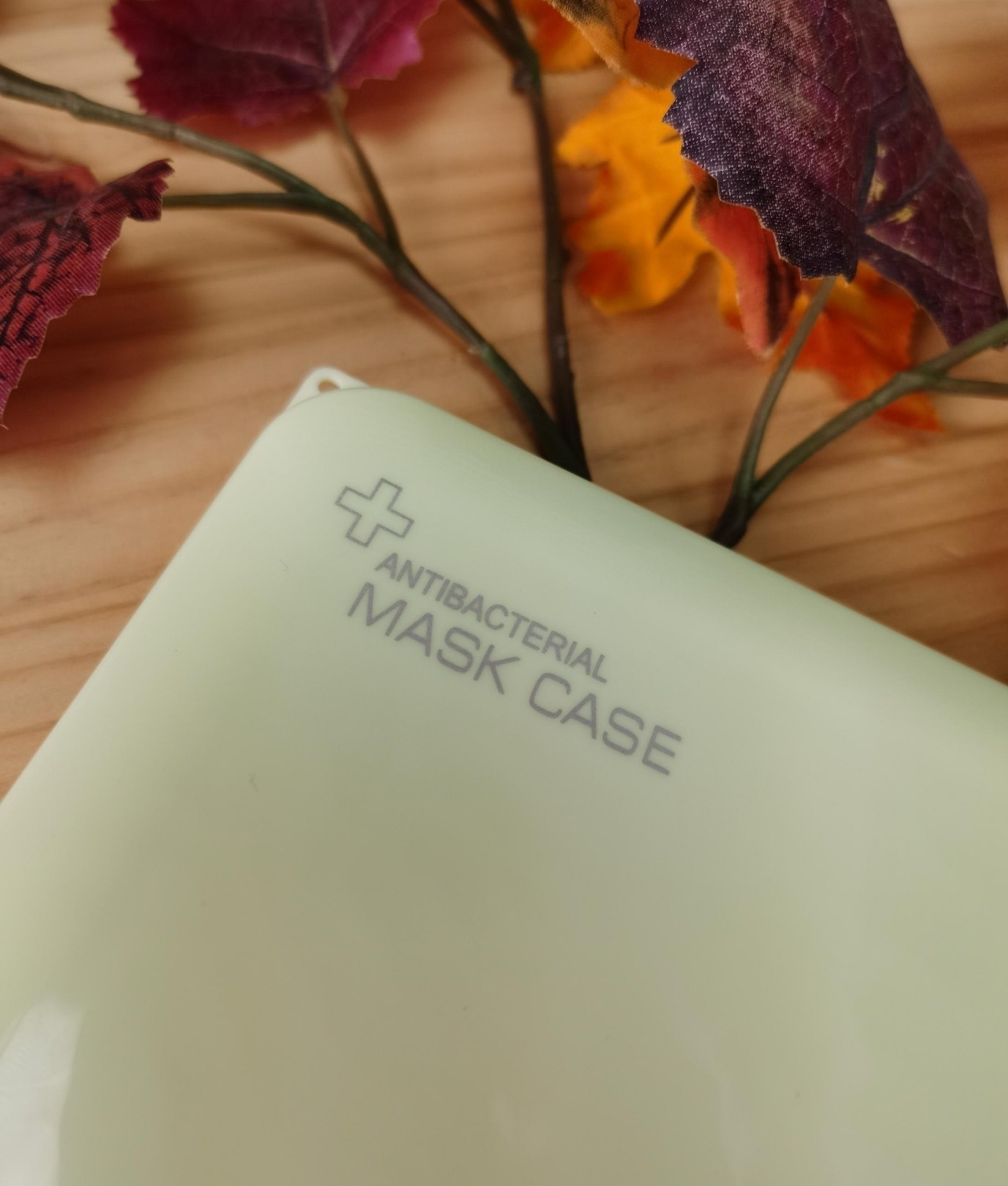 Mask Case - Blue