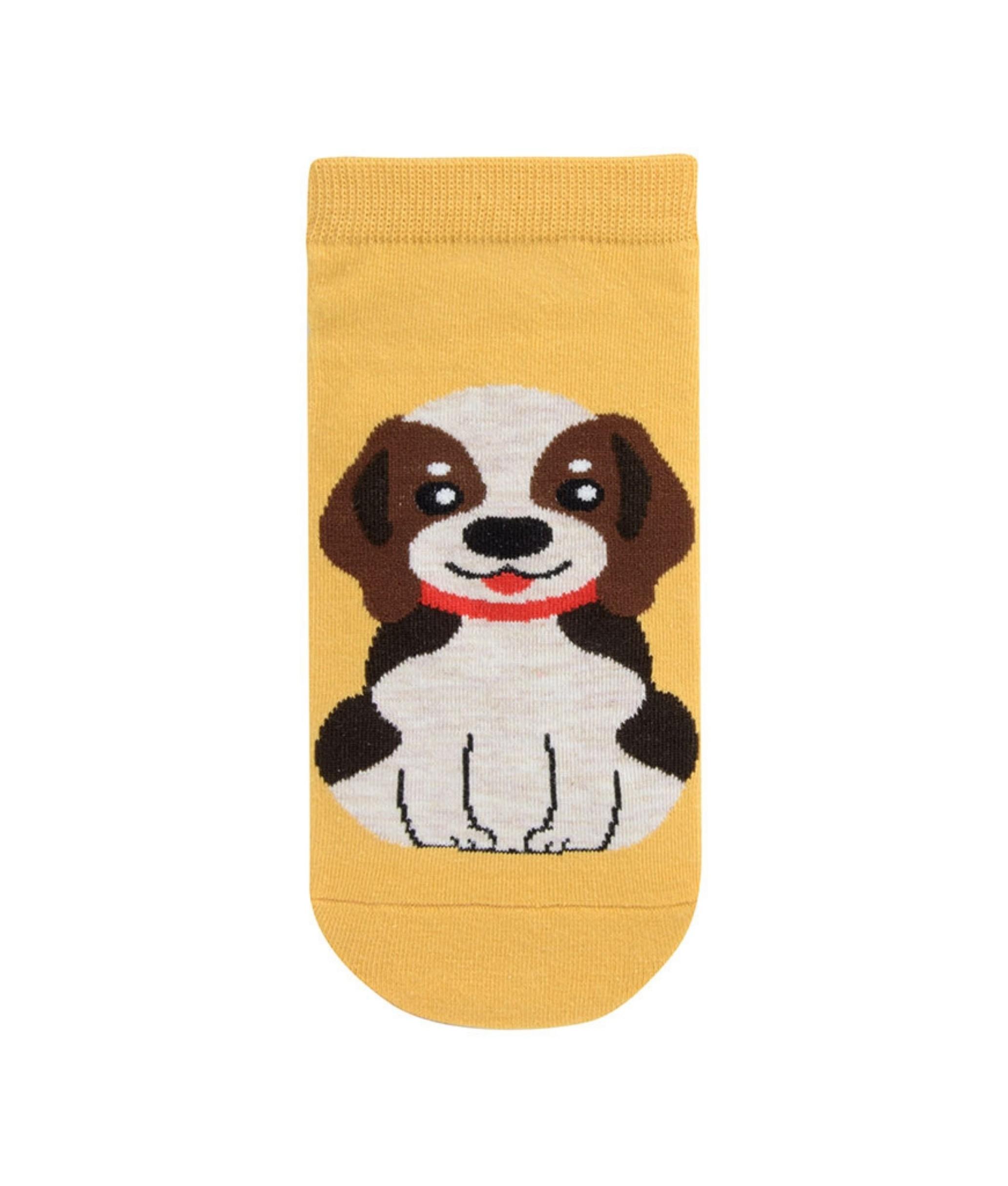 Sock Corto Kylie - Perro Amarillo