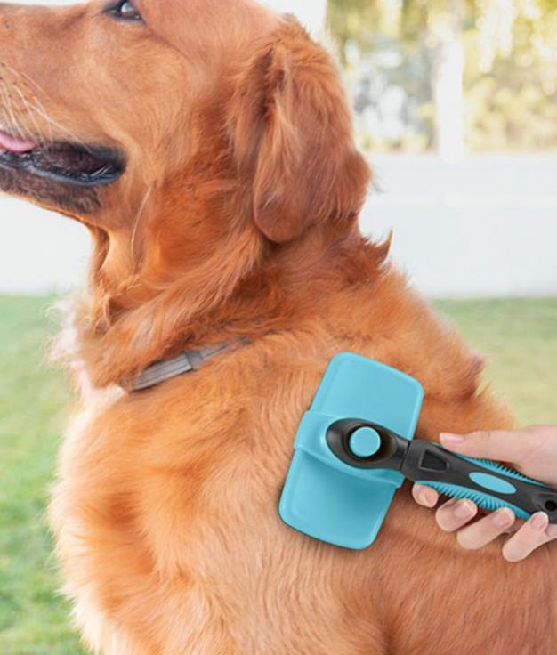 Cepillo de Limpieza para Mascotas con Púas Retráctiles Groombot